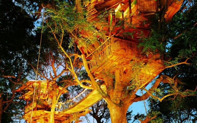 12. Дом на дереве дерево, здание
