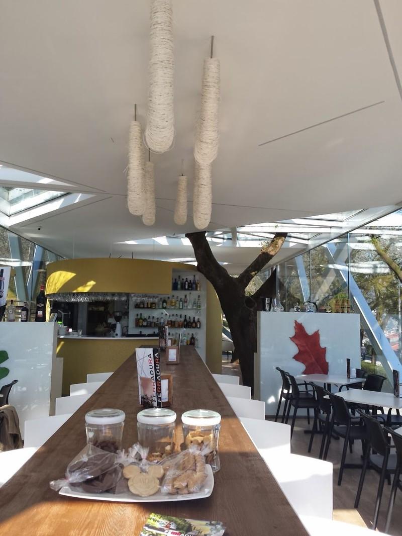 16. Ferradura Bar, Сантьяго-де-Компостела дерево, здание