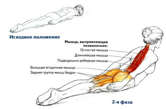Простое упражнение для идеальной осанки осанка, спина, упражнение