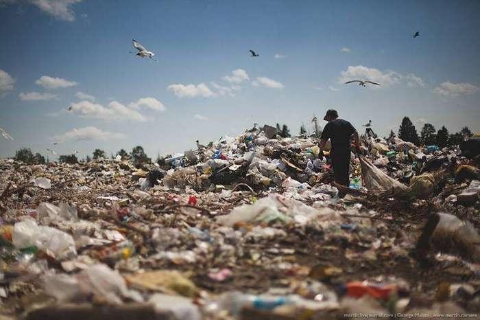 Настоящая выставка на мусорной свалке