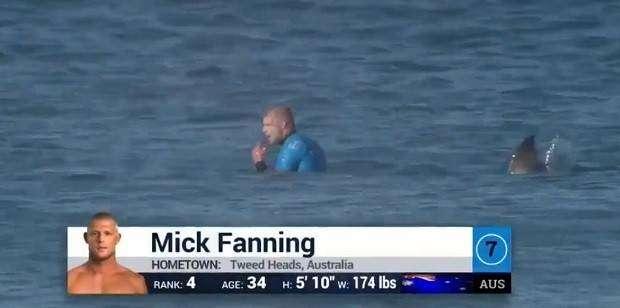 Серфингист подрался с напавшей на него акулой
