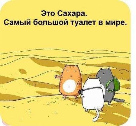 Комиксы для поднятия настроения.