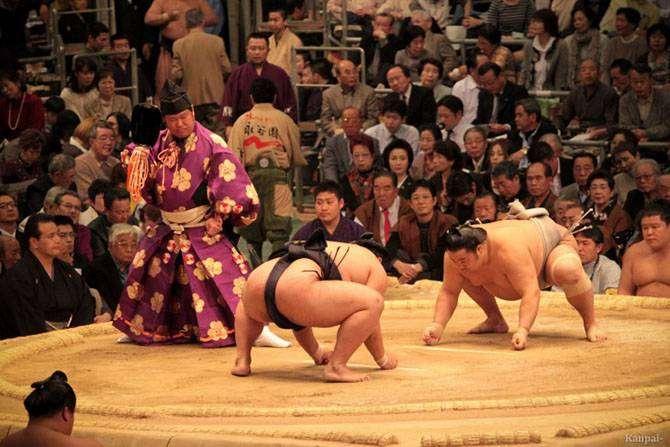 10 интересных фактов, которые вы не знали о сумо (10 фото)
