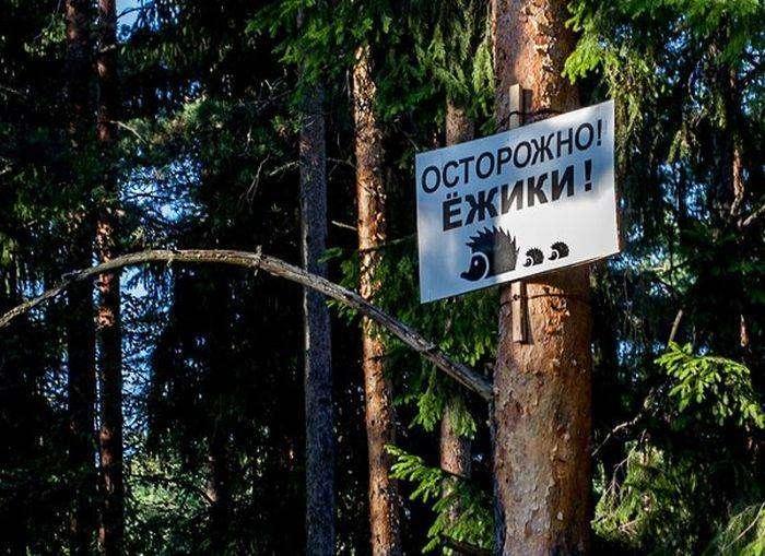 Подборка прикольных фото №1192 (93 фото)