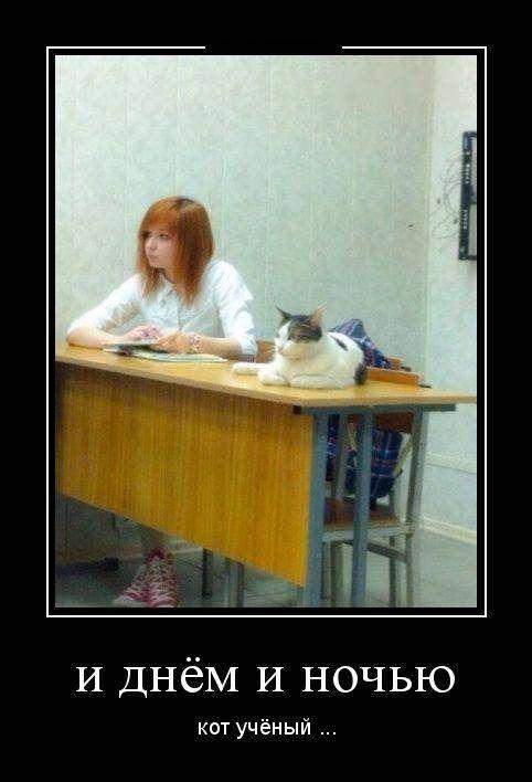 Демотиваторы №1142 (30 фото)