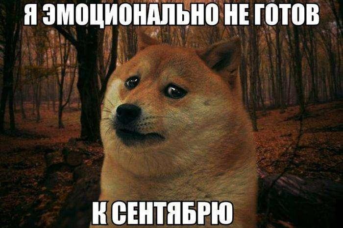 Подборка прикольных фото №1198 (107 фото)