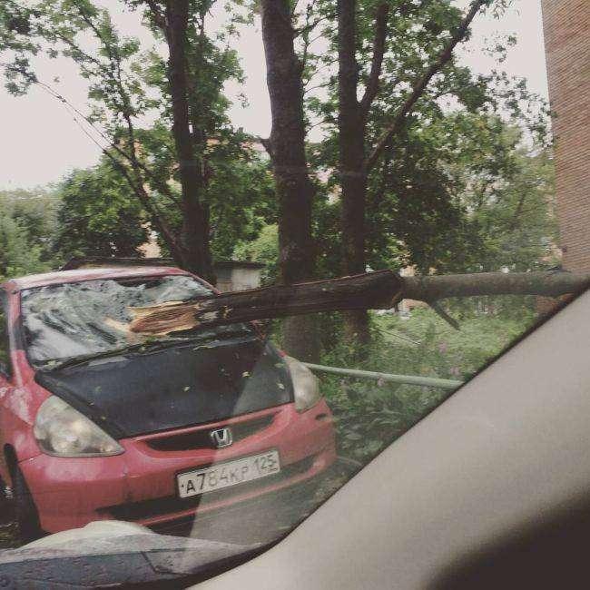 Приморский край ликвидирует последствия тайфуна «Гони» (16 фото)