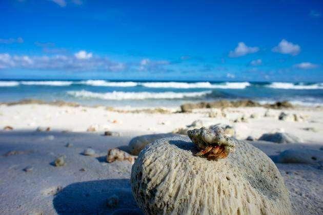 Как подготовиться к осени и не впасть в депрессию: запланируйте отпуск в ноябре