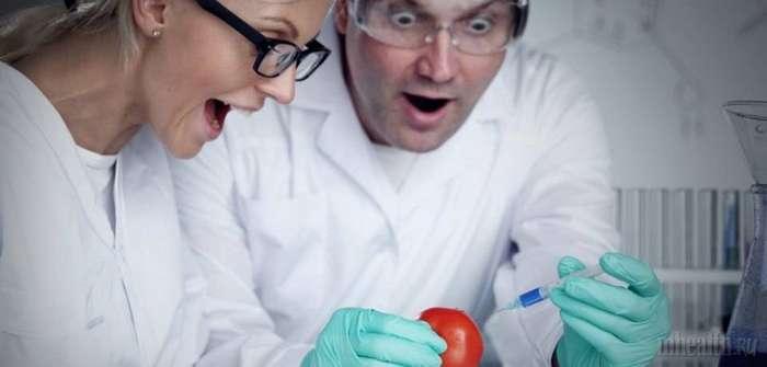 Можно ли есть продукты с ГМО: ответы на 8 ключевых вопросов
