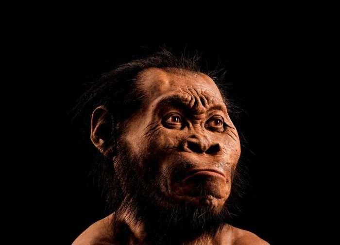 7 интереснейших фактов, которые нужно знать об эволюции человека