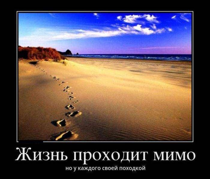 Демотиваторы №1157 (30 фото)