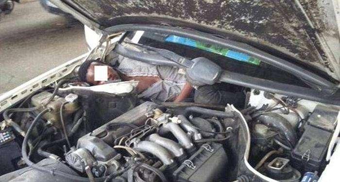 Мигранты спрятались под капотом и за задним сиденьем авто (3 фото)