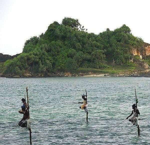 Интересный способ рыбалки (8 фото)