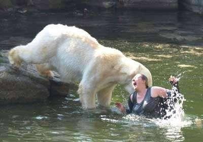 Искупалась с медведями (2 фото)