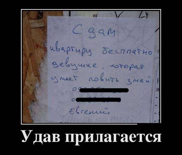 Демотиваторы на 7.09.2015г (30 фото)