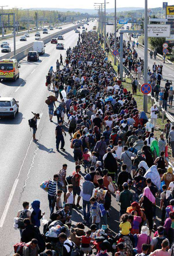 Беженцы решили дойти из Будапешта в Вену пешком (4 фото)