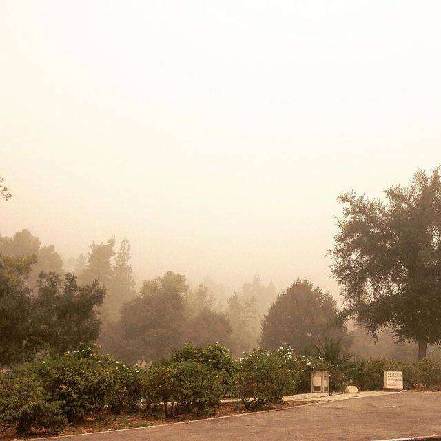 На Израиль обрушилась песчаная буря (21 фото)