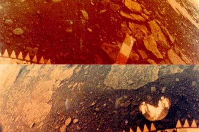 Лучшие сэлфи из космоса (10 фото)