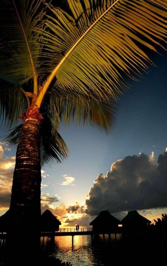 Кусочек рая (19 фото)