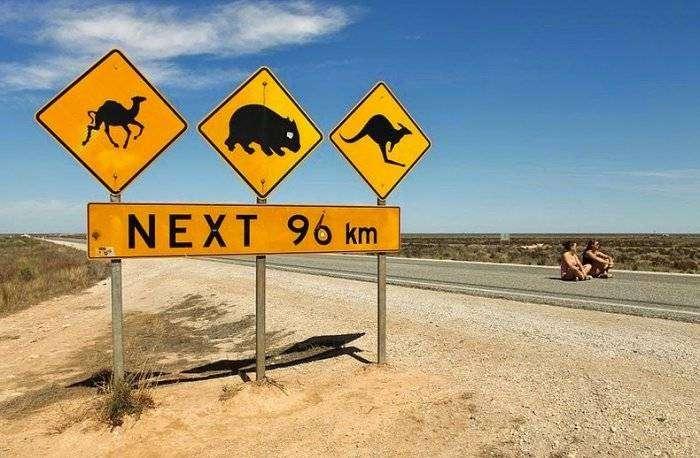 Самый длинный прямой участок дороги в мире (12 фото)