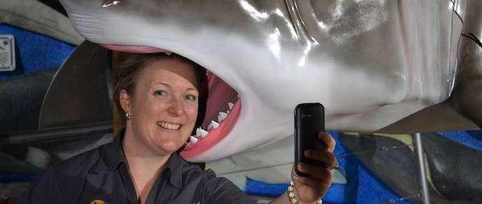Из-за «селфи» погибло больше людей, чем от клыков акул
