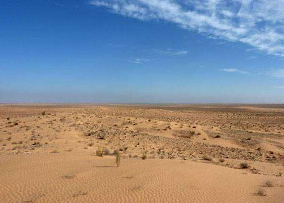 Ветер переносит 40 миллионов тонн пыли из Сахары до Амазонки каждый год