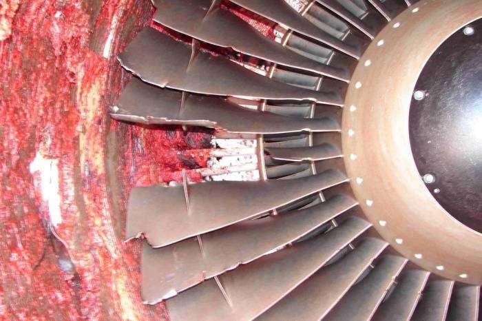 Жесть: Что произойдет с человеком, если он попадет в двигатель Boeng 737