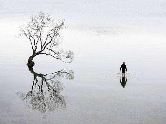 Лучшие фото живой природы за октябрь от National Geographic (20 фото)