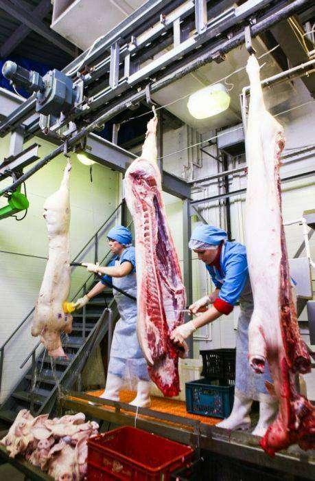 Производство колбасы и других колбасных изделий (38 фото)