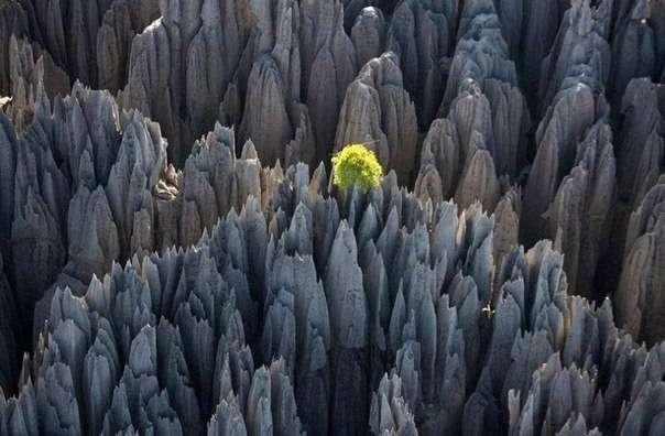 10 удивительных мест на планете, не тронутых человеком (10 фото)