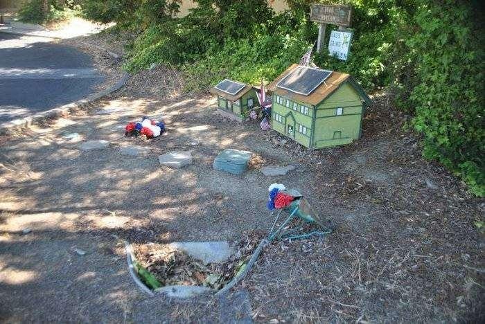 Тоннель для лягушек в Дэвисе (4 фото)