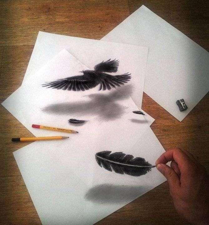 Невероятные иллюзии, нарисованные простым карандашом (25 фото)