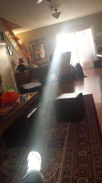 Чертовски прикольные фото на 25.11.2015г (104 фото)