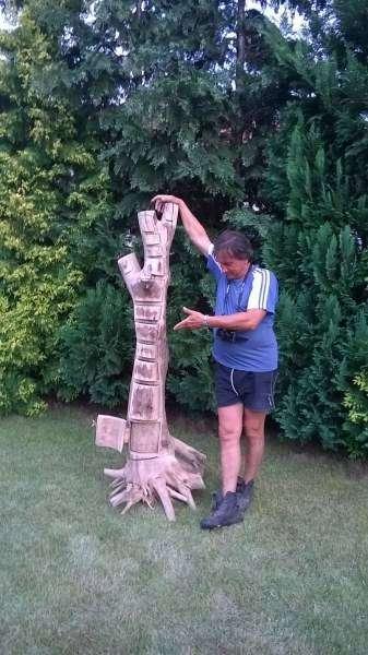 Невероятные шкафы из целого дерева ручной работы (16 фото)