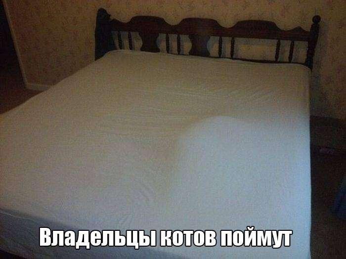 Чертовски прикольные фото на 26.11.2015г (114 фото)