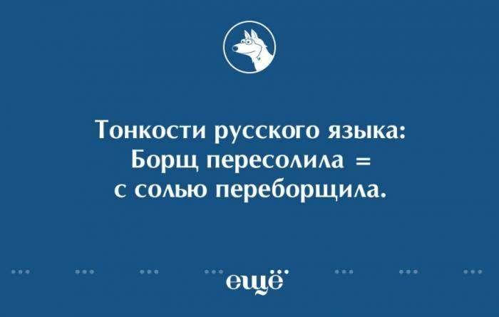О русском языке (10 картинок)