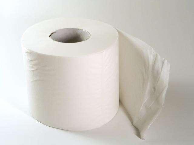 Туалетная бумага. Как люди додумались не подтираться рукой (7 фото)