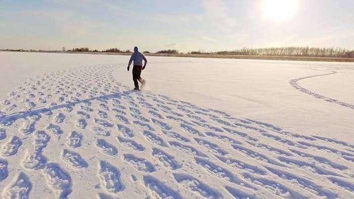 Сначала никто не мог понять, зачем он топчет снег (13 фото)