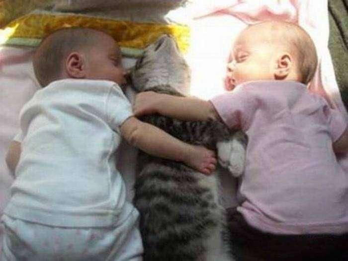 Мучители и жертва выдохлись и наконец-то спят!