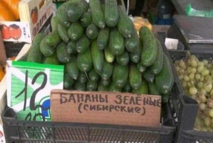 «Где еще удастся попробовать сибирские бананы!?»