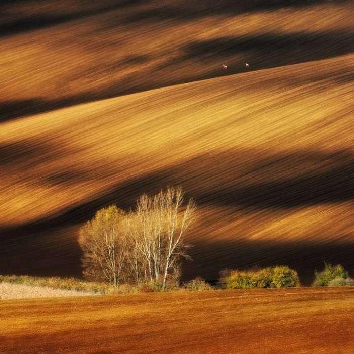 © Pawel Kucharski