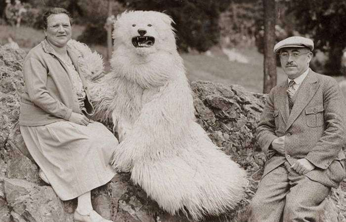 Фотографии с медведем.