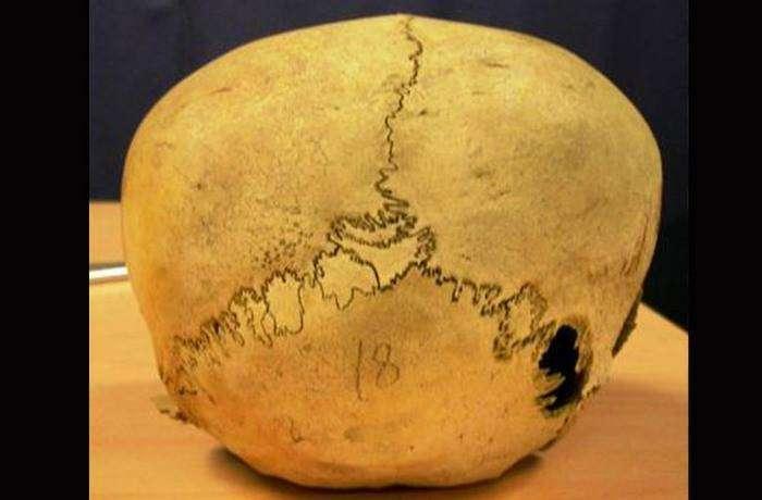 Перуанские черепа во Флориде.