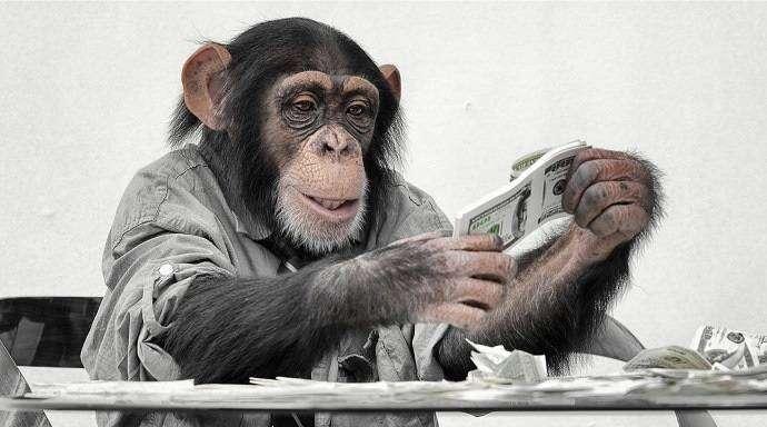 Как деньги делали из обезьяны человека