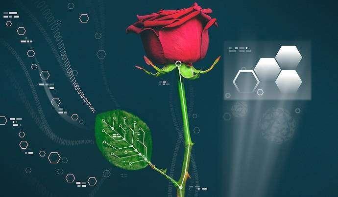 Учёные создали цветок-киборг