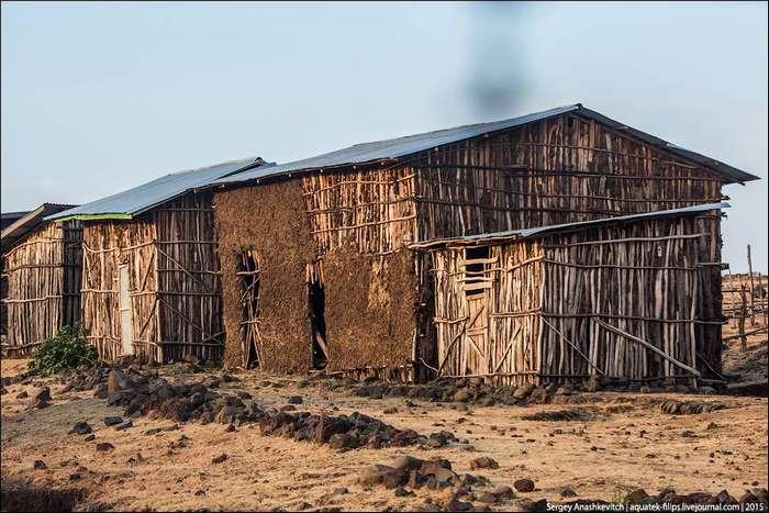 Эфиопские дачи