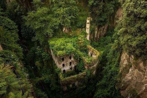 Битва природы и цивилизации