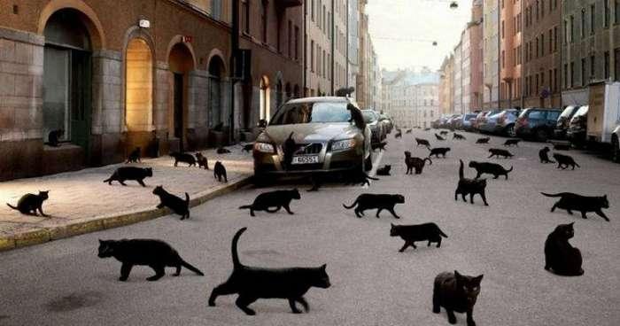 12 странных суеверий со всего мира