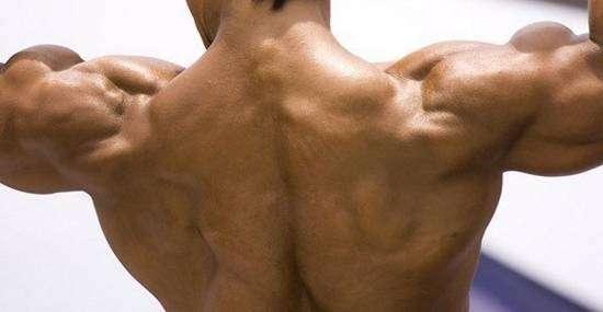 Пиво делает мышцы крепче?