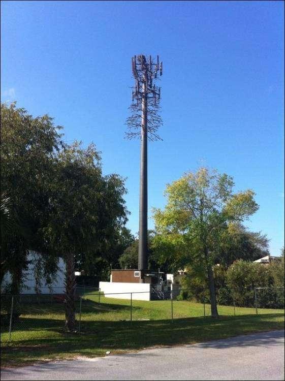 Замаскированные вышки сотовой связи (22 фото)